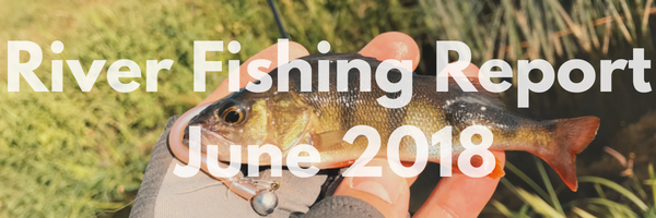 River Fishing Report For June 2018